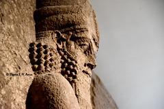 Apkallu from Sargon II's palace at Khorsabad (Sumer and Akkad!) Tags: sargonii khorsabad dursharrukin mesopotamia iraq britishmuseum london apkallu lamassu