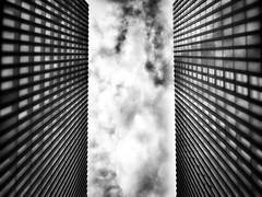 Mediahafen V (zuiko12) Tags: 1240mm mzuiko olympus zuiko cityscape omd zoom em1 dusseldorf blackandwhite wow