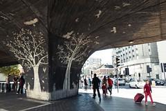 Westway (Simon Crubellier) Tags: europe england uk londonist tz60 streetart graffiti westminster lumix panasonic london britain tree birds westway flyover
