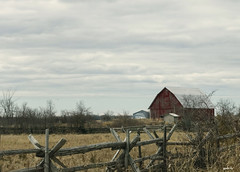 All Along the Fence (gabi-h) Tags: field rural fence farm rustic april friday redbarn princeedwardcounty gabih cedarrailfence
