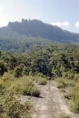 Towards the Three Sisters, Kedumba Fire Road.  Blue Mountains National Park, NSW, April 1970. (garratt3) Tags: aus bluemountains bluemountainsnationalpark bushwalking film mountsolitary pentax rural wilderness australia kodachrome nsw newsouthwales paddymade