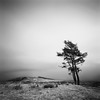 An Approaching Snowstorm in Corrour (Mark Rowell) Tags: longexposure 120 6x6 film mediumformat scotland highlands fuji hasselblad acros corrour swc rannochmoor 903 weldingglass meallnalice