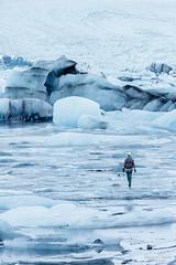 Walking on Thin Ice II - Iceland (acseven) Tags: blue winter white snow cold ice gelo nature water branco azul dawn is iceland europa europe natureza glacier east iceberg lagoa inverno glaciar frio amanhecer jkulsrln islndia icebergue