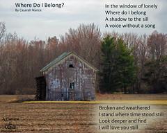 Where Do I Belong- (casarahnance) Tags: county camera lake art poetry clare poem harrison thomas houghton quill nance roscomon casarah randomca acameraandaquillcom