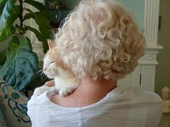 Ahhhhhh ... (I Flickr 4 JOY) Tags: dianne tessa backview freckles tessacurlywhiskers tessasofttummy happy happycat