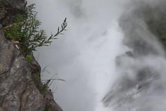 IMG_7001 (pmarm) Tags: niagarafalls waterfall water mist