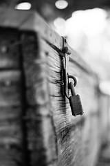 Every Secret Kept (belleshaw) Tags: blackandwhite orangeempirerailwaymuseum lock metal rust chest wood grain nails locked secure detail bokeh