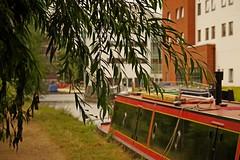 1295-06L (Lozarithm) Tags: aylesbury bucks canals guc narrowboats leaves pentaxzoom k1 28105 hdpdfa28105mmf3556eddcwr