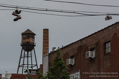 Dangling Shoes and a Water Tower in Brooklyn, New York