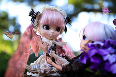 Changing Love (dreamdust2022) Tags: man cute loving lady angel hug kiss doll pretty king little sweet father mother kind fairy aurora wise strong brave pullip charming magical playful tender taeyang alvarie