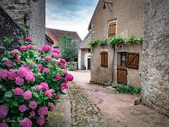 Mont Saint Vincent ( Christian .......) Tags: village pierres bourgone france mdival christiandefachelle
