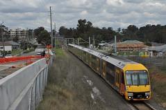 Richmond bound at Schofields (highplains68) Tags: aus australia nsw newsouthwales sydney sydneytrains richmondline schofields waratah aset