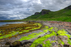 _XT21076_7_8 (sns85225) Tags: bay beach cliffs highlands isleofskye path rock scotland seaweed staffin staffinbay trotternishpeninsular unitedkingdom water
