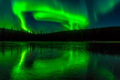 light snakes (SeALighT!) Tags: suomi finland finnland lapland lappland kslompolo kskero lake ice autumn trees aurora auroraborealis northernlights
