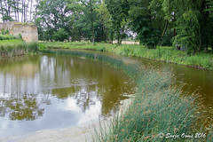 MIDDLE AGES (Sonja Ooms) Tags: ages belgie belgium grass green lanaken middle middleages moatpietersheim nature pietersheim pond tree water watercastle waterburcht