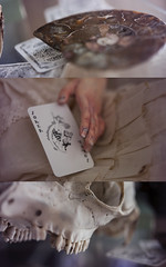 [Cards]  (Koala Krash) Tags: bjd balljointdoll balljointeddoll doll ball joint resin switch mara koalakrash card antics game toy vintage rrabit rabbit