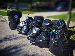 3+ hours and 10 bags later  WHEW!! (Lee Bennett) Tags: trash yard bag lawn curb clipping yardwork day158 365daysofhappy