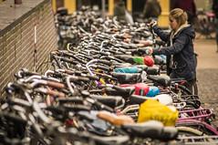 Bikes (Matt H. Imaging) Tags: street minolta sony depthoffield bicycles beercan groningen slt a55 sonyalpha minolta70210f4 minoltaaf70210mmf4 slta55v ©matthimaging