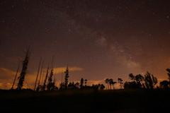 El Camino de Santiago (tiofeote) Tags: estrellas valactea nocturna