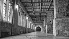 cloister (neals pics) Tags: building architecture cathedral history religion stone worship corridor light window beams my100xbw bw blackwhite monochrome blackandwhite mono 100xthe2016edition 100x2016 image52100