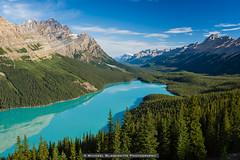 Luminous Basin (Mike Blanchette) Tags: canada canadianrockies glacier green lake mountain peytolake rockies rockymountains turquoise improvementdistrictno9 alberta ca