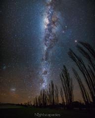 Fields of electric fog (nightscapades) Tags: astronomy astrophotography autopanopro eurobodalla galacticcore milkyway night nightscapes pano panorama panos sky southcoastnsw stars stitch tuross turosshead