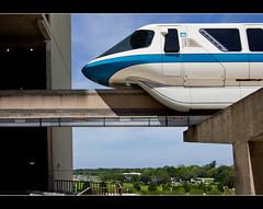 Monorail Monday II - Volume 7 (DugJax) Tags: waltdisneyworld magickingdom contemporaryresort resortmonorail monorail monorailblue canonrebelt2i ef1740mmf4lusm monorailmonday