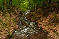 Savour the Flow (BeNowMeHere) Tags: ifttt 500px waterfall benowmehere bolu landscape nature river savourtheflow turkey yedigller flow forest savour spring travel trip