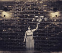 Flight (soultraveler106) Tags: woman brick bird square fly hawk flight goddess egypt squareformat egyptian motivation crema soar iphoneography instagramapp uploaded:by=instagram