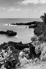 Old Lava Flows (rschnaible) Tags: maui hawaii us usa road hana seascape landscape outdoor sightseeing tour tropics tropical ocean pacific waianapanapa state park bw black white photography monotone