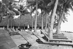 Noumea resort (robinguymer) Tags: lemeridien newcaledonia noumea film bw nikonfe2 beach resort