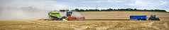 harvesting panorama (enteryourscreenname) Tags: a6000 sony carlzeissjena135mmf35 panorama claas combine harvester harvesting england kent uk fendt tractor grain