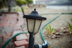 garden light [Day 2793] (brianjmatis) Tags: ground hose light path photoaday project365 yard