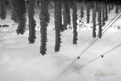 150224  Sea of clouds on Schnalstal (bellodis) Tags: bw mountain snow alps primavera clouds spring nuvole neve alpi montagna icicles seaofclouds schnalstal 2015 ghiaccioli senales horizontalformat mountainlandscapes nikongear maredinuvole wwwbellodiscom dariobellodisphotographer