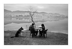Albanie transit (Punkrocker*) Tags: street leica city travel people film 35mm kodak trix nb summicron 400 balkans albania asph m7 tirana tirane albanie 352 bwfp