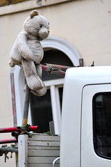 Out in all weather (jeremyhughes) Tags: bear street city winter urban london truck toy nikon scaffolding teddy sigma plush mascot teddybear stuffedanimal vehicle 70200mmf28 d700 scaffoldingtruck