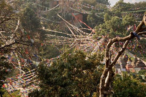 "d1 - Kathmandu - Durbar Square (40) <a style=""margin-left:10px; font-size:0.8em;"" href=""http://www.flickr.com/photos/125852101@N02/17876179755/"" target=""_blank"">@flickr</a>"