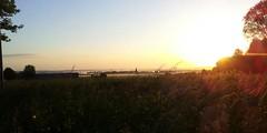Montfort l'Amaury => Mr Gare, Yvelines, France (jlfaurie) Tags: bunnies sunrise gare amanecer manana lapins conejos leversoleil montfortlamaury mr jlfr petitmati