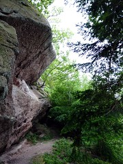 "Near Hearkening Rock, Highmeadow Woods • <a style=""font-size:0.8em;"" href=""http://www.flickr.com/photos/41849531@N04/17915870574/"" target=""_blank"">View on Flickr</a>"
