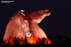 The Kelpies at falkirk, Scotland (Nigel Blake, 13 MILLION...Yay! Many thanks!) Tags: andy scott scotland clyde canal high artist forth sculptures horsehead falkirk the kelpies 30metre thekelpies nigelblake nigelblakephotography