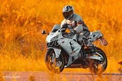 HONDA CBR 600 RR (DOCESMAN) Tags: road bike sport honda rr moto motorcycle motor cbr motorrad motorcykel moottoripyörä motocykel motorkerékpár docesman mototsikl danidoces