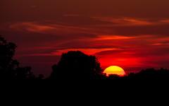 P1010489 (Botterbloom) Tags: sunset germany deutschland sonnenuntergang panasonic schleswigholstein lumixgx7 lumixgvario14140mmf35