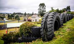 Waratah Play Ground & Park (paulledger81) Tags: waratah tasmania australia tarkine park tyres playground