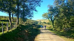 Caminho Francs de Santiago (vmribeiro.net) Tags: saintjeanpieddeport france frana saint jean pied port sony z1 caminho camino way jacques james santiago rota napoleo pirenus pyrenees mountain trail