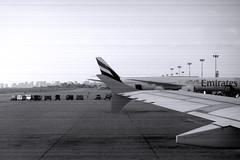 Planes on platform (davidvankeulen) Tags: republieklibanon républiquelibanaise middleeast middenoosten afrikaeurazië lebanon libanon liban beirutrafichaririinternationalairport beirutinternationalairport airport flughafen luchthaven vliegveld aéroport airportcity davidvankeulen davidvankeulennl davidcvankeulen urbandc europe