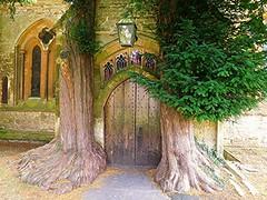 Guarded doorway! (springblossom3) Tags: doorway church nature religion door tree trunk