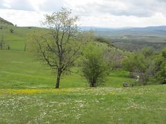 Slope with wildflowers, farm at Vidikovac, Uvac Nature Reserve, Serbia (Paul McClure DC) Tags: uvac naturereserve serbia srbija zlatibor druinie vidikovac sjenica balkans may2016 scenery
