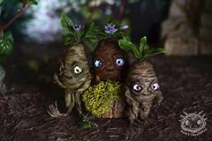Mandrake trio (rioky_angel) Tags: cute monster creativity toys furry handmade ooak fluffy fantasy clay artdoll creature arttoy mandrake toymaker polimerclay riokycreatures