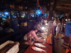 Traders and customers in a fish market,Bangladesh (Shafi Uddin1) Tags: fishmarket business asia city citylife fishingindustry market stocktrader standing service selling retail seafood photography people outdoors men horizontal groupofpeople streetsofbangladesh bangladesh bangladeshstreetphotograph bangladeshstreetseller streetsofnetrokona streetportrait streetscene streetsofcity streetphotography streetseller street netrokona netrokonaborobazar night nikon nikonlens ngc supershot fishermen fish