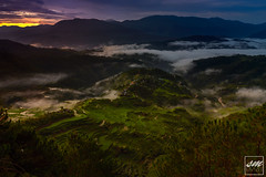 Kupapey Sunrise (Sunny Merindo | Photography) Tags: trees mountain green nature clouds sunrise landscape dawn spring rice top philippines terraces range province riceterraces mountaineer luzon mountainprovince smerindo sunnymerindo itsmorefuninthephilippines sunnymerindoimages
